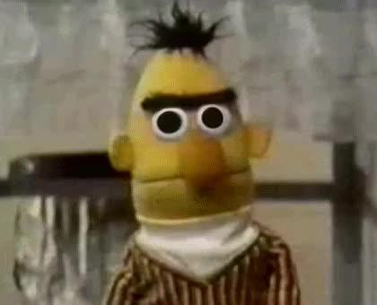 Watch and share Bert Stare GIFs on Gfycat