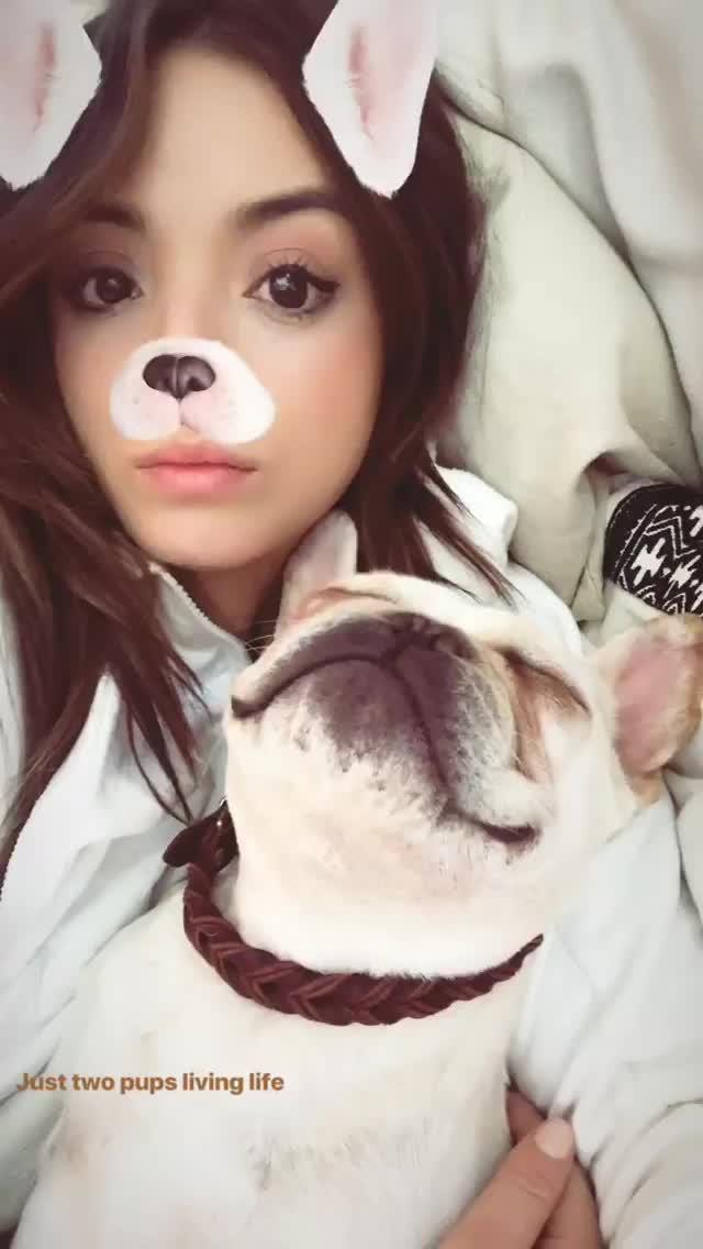 ChloeBennet, Two Pups GIFs