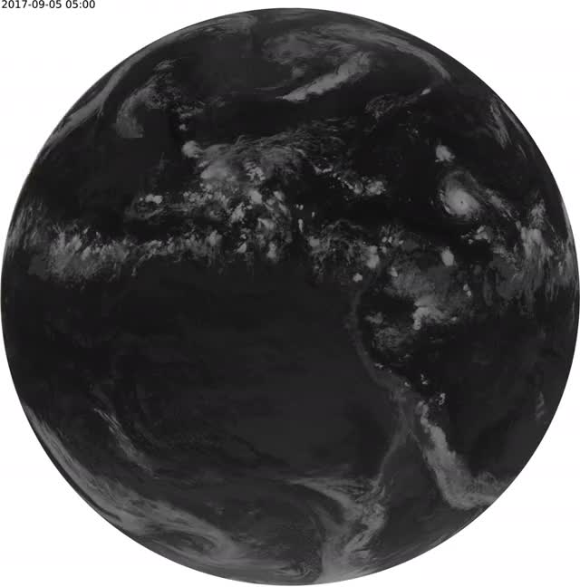Watch and share Hurricane Irma From GOES-16 (earth.apawl.com) GIFs on Gfycat