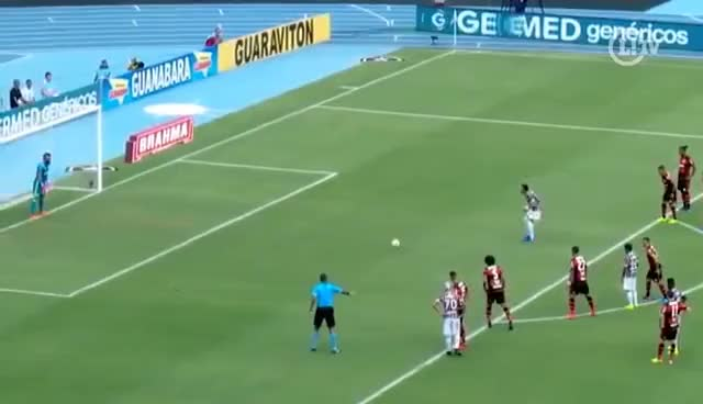 Watch and share Nos Pênaltis, Fluminense Vence Flamengo E É Campeão Da Taça Guanabara GIFs on Gfycat