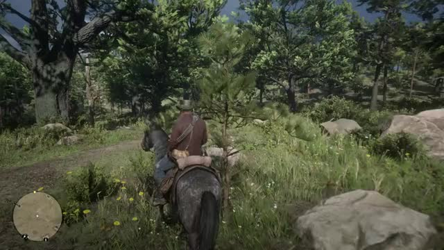 Watch and share RDR2-FULL GIFs on Gfycat