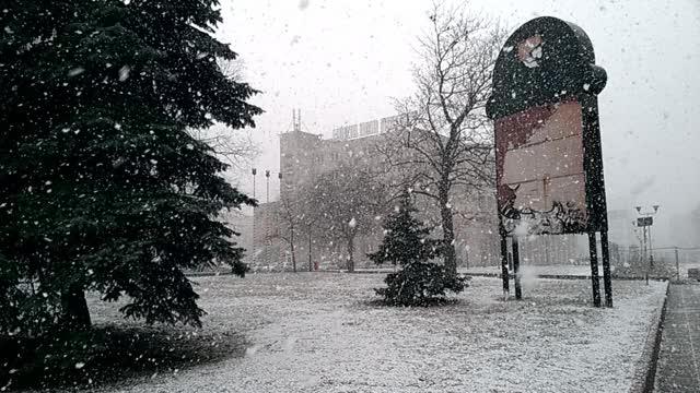 Watch snowfall GIF on Gfycat. Discover more Lodz, snow GIFs on Gfycat