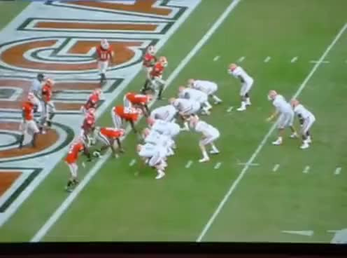 Watch and share Florida GIFs and Gators GIFs on Gfycat