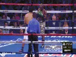 Watch Bradley Rocks Pacquiao GIF by @mightyfighter on Gfycat. Discover more related GIFs on Gfycat