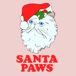 Watch this kris kringle GIF by The GIF Smith (@sannahparker) on Gfycat. Discover more awww, cat, christmas, father christmas, festive, happy holidays, holiday, holidays, kitty, kris kringle, look human, santa, santa claus, santa claws, santa paws GIFs on Gfycat