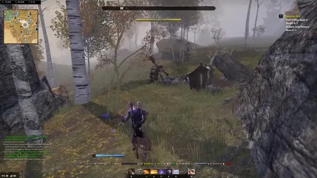 """Watch and share Elder Scrolls Online: """"What....what Have I Done?"""" GIFs by enforcerupu on Gfycat"""