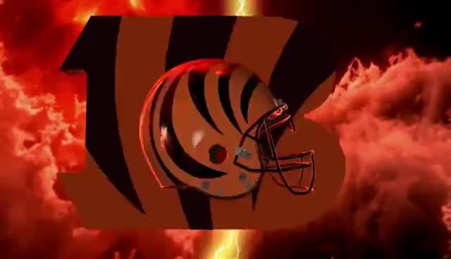 Watch and share Bengals GIFs on Gfycat
