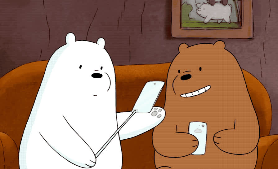 bare, bears, best, bff, cartoon, cheese, couch, friends, network, new, phone, photo, picture, pose, say, selfie, smile, stick, tada, we, We bare bears - Selfie  GIFs