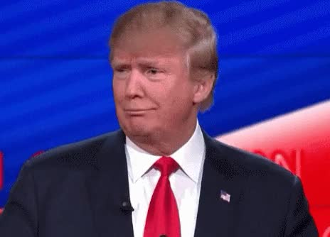 Watch this donald trump GIF on Gfycat. Discover more related GIFs on Gfycat
