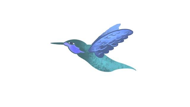 Watch and share Hummingbird V2 GIFs on Gfycat