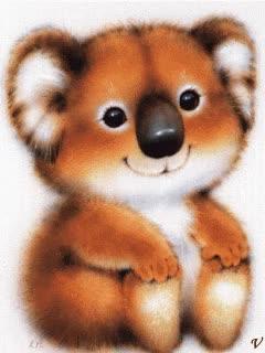 Watch and share Koala Foto Koala.gif GIFs on Gfycat