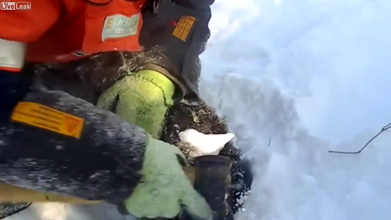Freezing doggo saved after being cut out of the ice GIFs