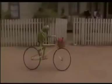 Watch Kermit GIF on Gfycat. Discover more Kermit GIFs on Gfycat