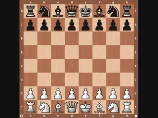 Watch and share Kasparov Immortal GIFs and Topalov GIFs on Gfycat