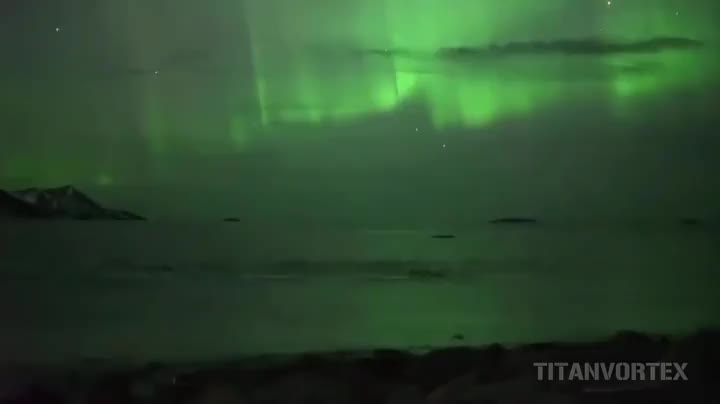 Whales Swimming Under The Northern Lights GIFs