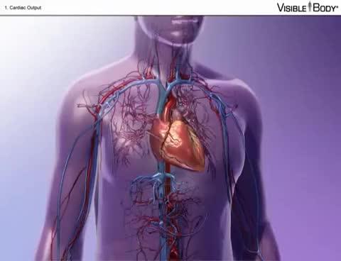 La Función del corazón | Find, Make & Share Gfycat GIFs