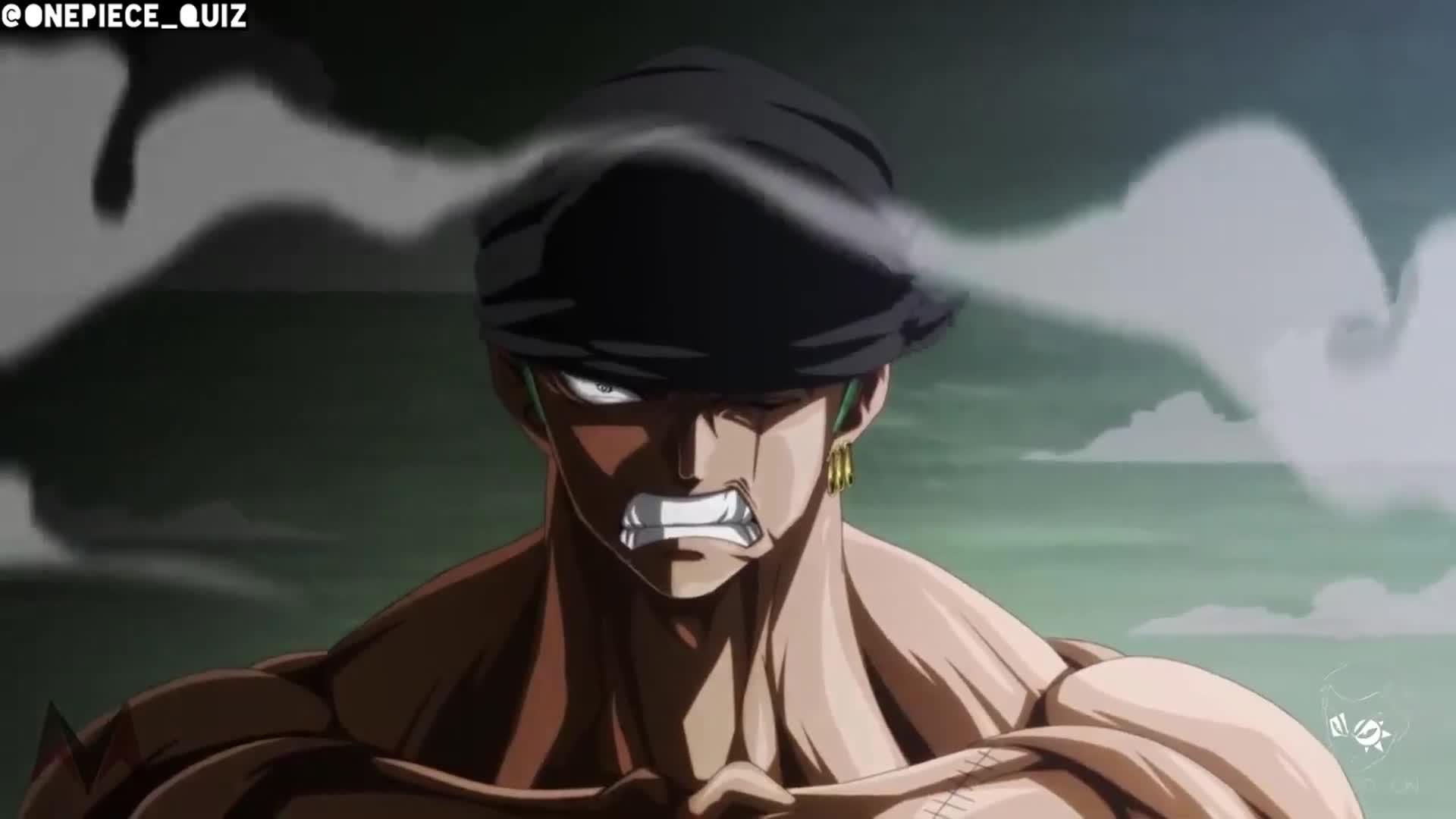 Zoro Vs Shogun Hd Full Fight Gif