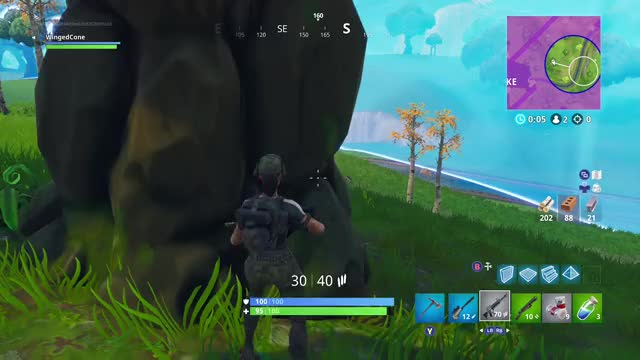 Watch and share Fortnitebr GIFs and Wingedcone GIFs by Gamer DVR on Gfycat