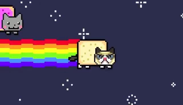 cat, grumpy, grumpy cat, nyan cat, Grumpy Nyan Cat [Original] GIFs