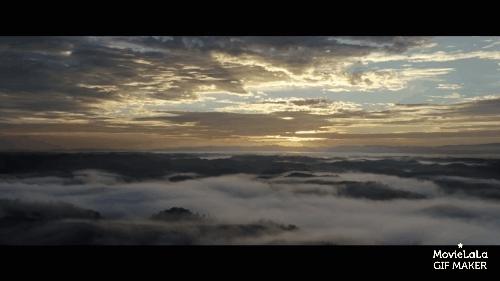 gifs, movies, naturegifs, Pete's Dragon Trailer GIFs