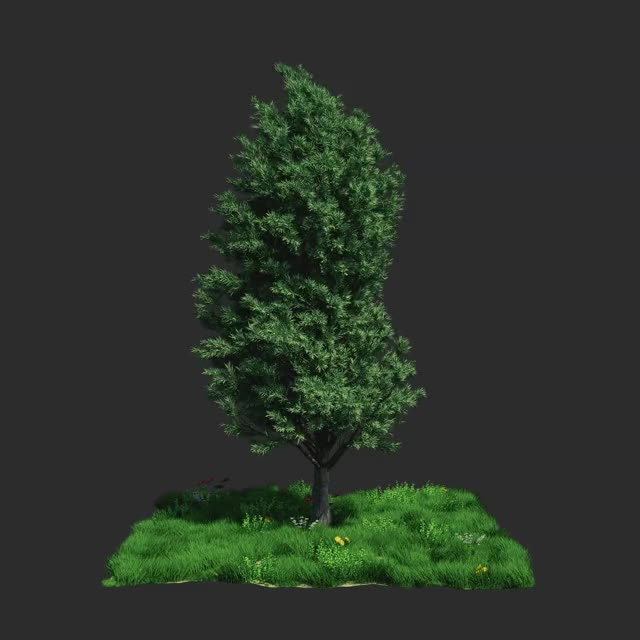 Watch and share Simulation GIFs and Cinema 4d GIFs by Samuel Rodrigues on Gfycat