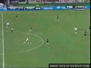 Watch and share Plate GIFs on Gfycat