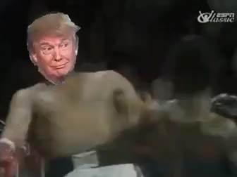 donald trump, Can't touch this GIFs