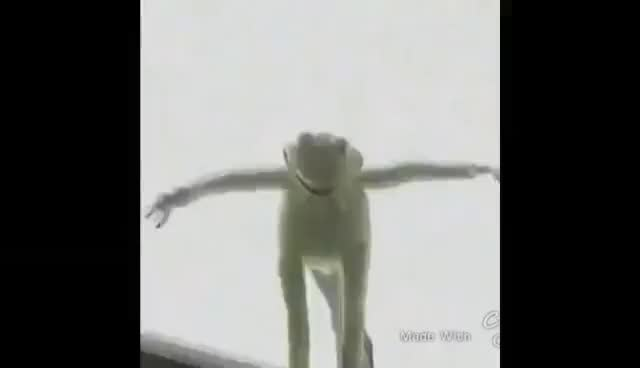 Kermit Roof Gif Kermit The Frog Falls Off Roof Vine