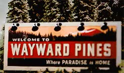 things I loved in 2015 [2/5 shows]  WAYWARD PINESDo not try
