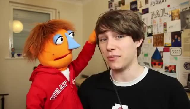 Watch and share Puppets GIFs on Gfycat