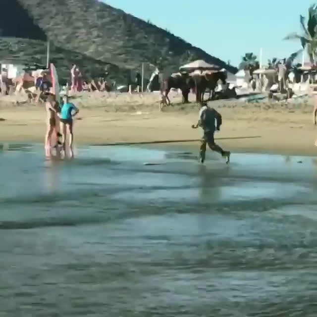 holdmybeer, HMB As I go skimming GIFs