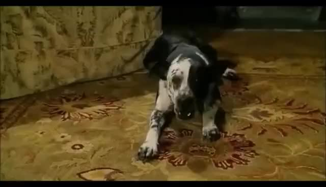 Watch and share Bruce Almighty GIFs and It\'s Good GIFs on Gfycat