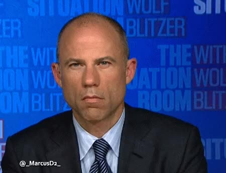 Watch Michael Avenatti GIF by MarcusD (@-marcusd-) on Gfycat. Discover more related GIFs on Gfycat