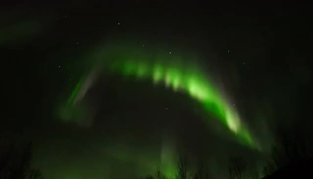 Watch ARCTIC - UNDER THE NORTHERN LIGHTS GIF on Gfycat. Discover more related GIFs on Gfycat