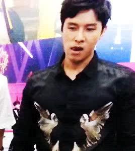 Watch ce GIF on Gfycat. Discover more Dongwan, Shinhwa, edit:dw, edit:kcon15, edit:shinhwa, gif:dw, gif:shinhwa GIFs on Gfycat