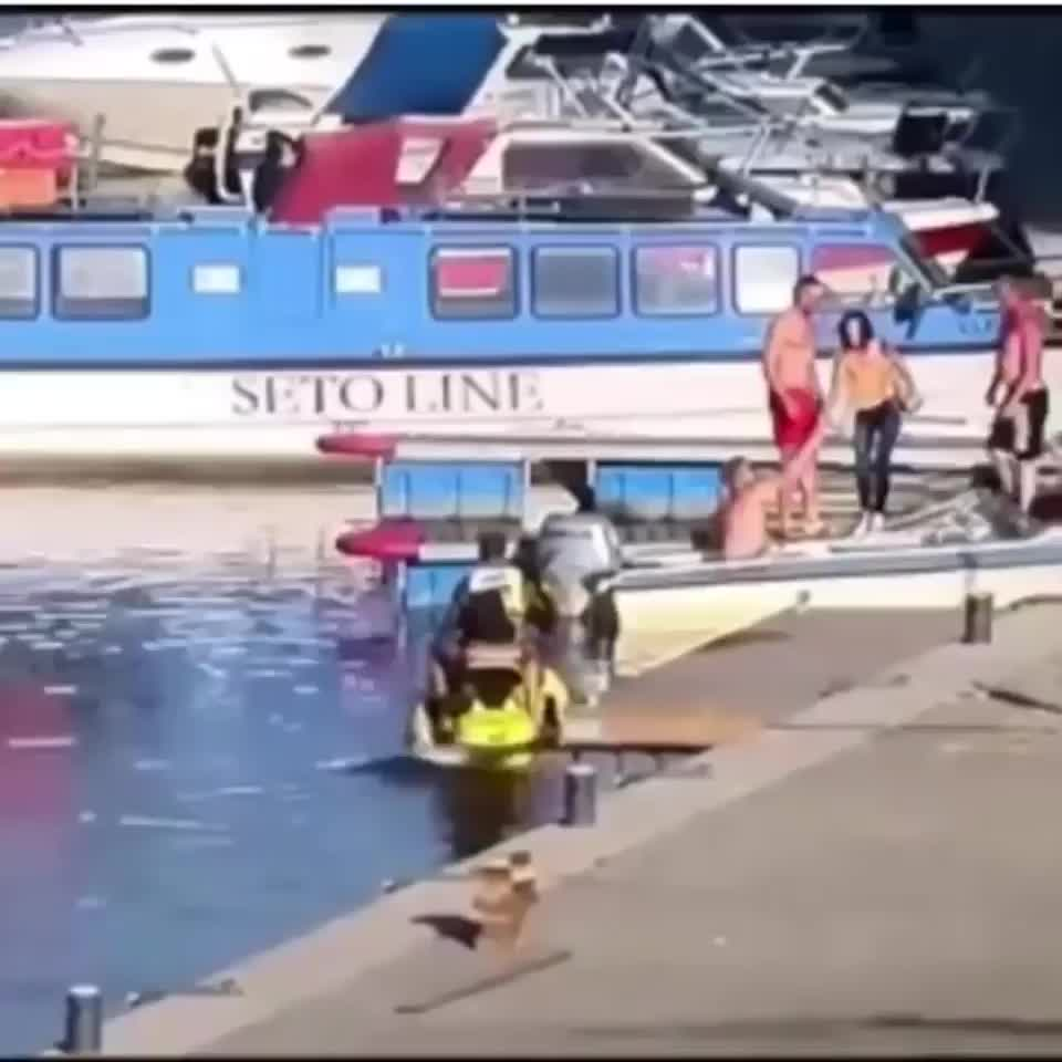 ImaginingDragon, Jet ski explodes, launching its rider into the air. GIFs