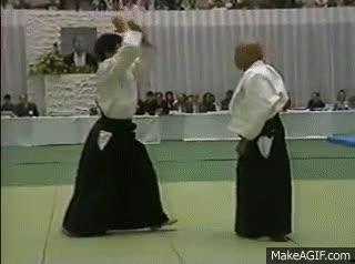 KI in Aikido GIFs