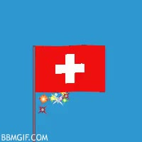 Watch 🇨🇭 — Switzerland GIF on Gfycat. Discover more related GIFs on Gfycat