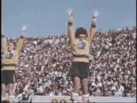 colorado state university, csu, colorado state, colorado state rams, cheer GIFs