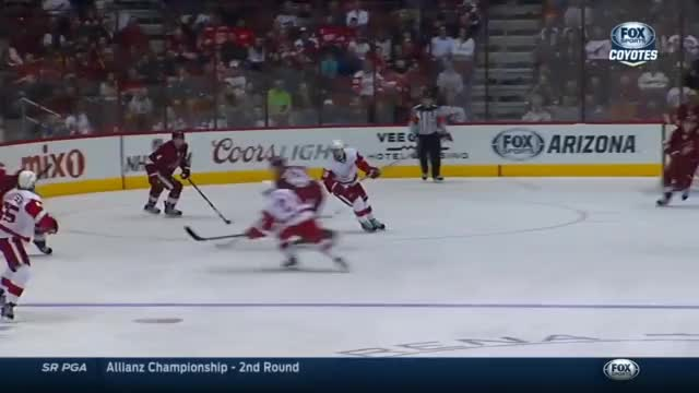 Watch this GIF by @bmac39 on Gfycat. Discover more detroitredwings GIFs on Gfycat