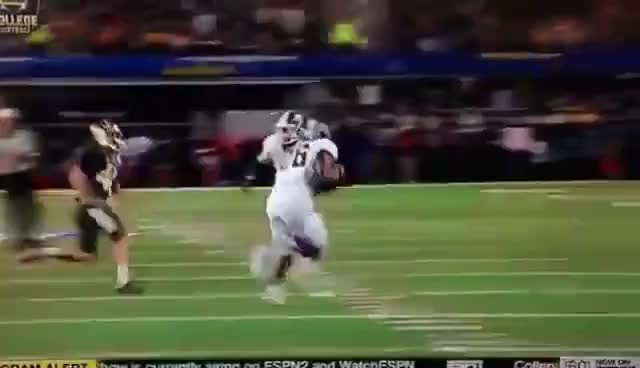 Watch and share Baylor GIFs on Gfycat