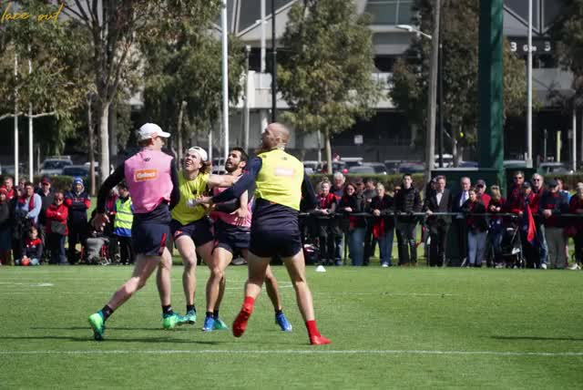 Watch weid gawn contest GIF by Lace out (@laceout) on Gfycat. Discover more afl, mfc, rugby GIFs on Gfycat