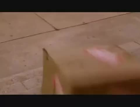 Watch and share Ace Ventura Smashes Package GIFs on Gfycat