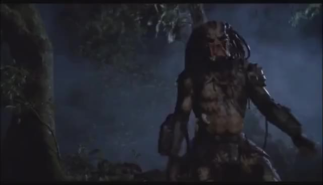 Watch and share PREDATORS - Unmasked GIFs on Gfycat