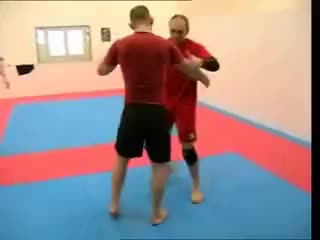 Watch this mixed martial arts GIF on Gfycat. Discover more mixed martial arts, mma, none GIFs on Gfycat