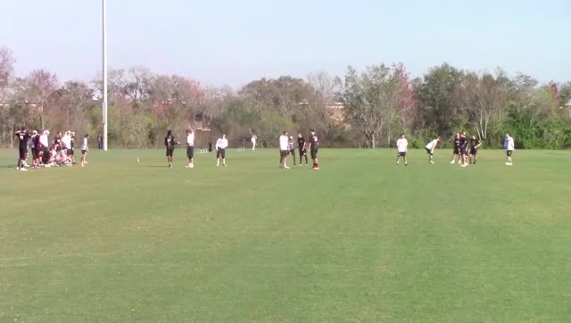 Watch and share Cricket GIFs by Gamecock Ultimate Film Clips on Gfycat