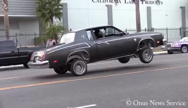 Watch and share Sunday Lowriders In Compton With Punk Ass Sheriffs GIFs on Gfycat