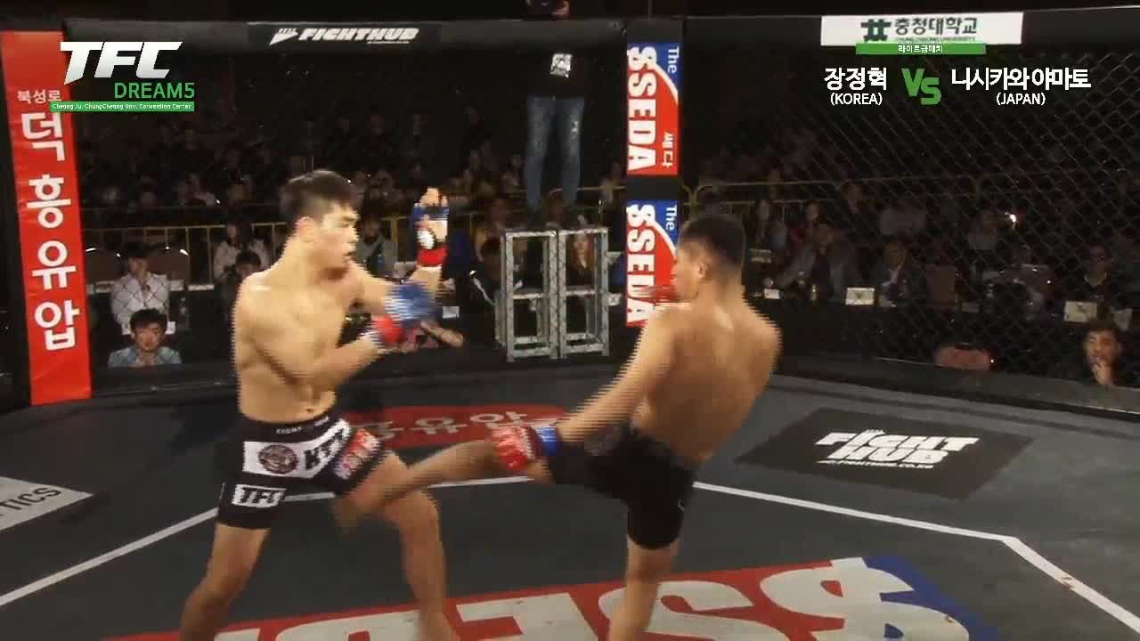 Fighting, Fights, KO, Knockout, MMA, TFC, TFCdream, TKO, UFC, violence, Jeong Hyuk Jang with a crazy win at TFCDream GIFs