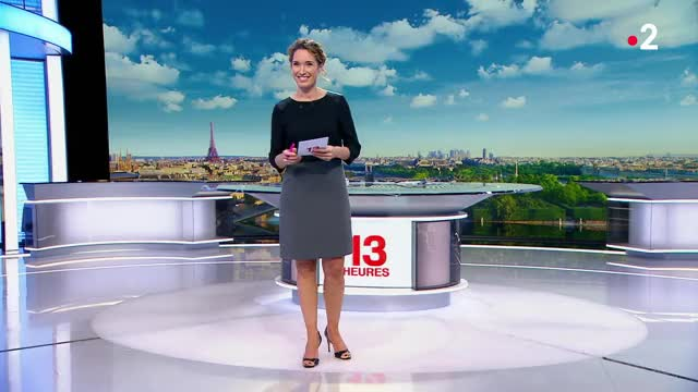 Watch and share MarieSophieLacarrau@Le13h161118 GIFs by Journaliste & Pute on Gfycat