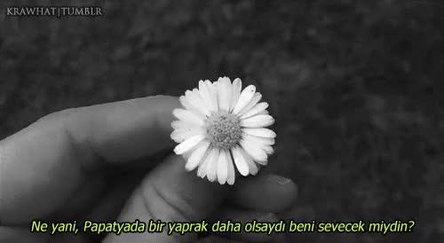 Watch and share Postlarim GIFs and Güzel Söz GIFs on Gfycat